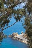 在路的弯在恋人在卡塔利娜海岛度假村,海的` s小海湾在玉树构筑的背景,垂直格式中 库存照片