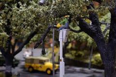 在路的微型修剪的树和裁减叶子 工作者在卡车起重机站立 免版税库存照片