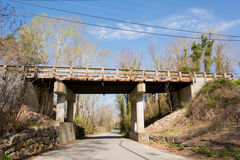 在路的木桥梁在森林孔 库存图片