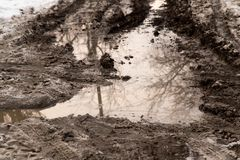 在路的水坑在冬天 免版税库存照片