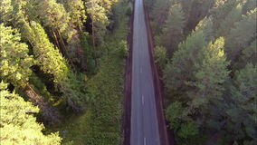 在路的汽车在森林,鸟瞰图里 影视素材