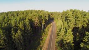 在路的汽车在森林,鸟瞰图里 股票录像