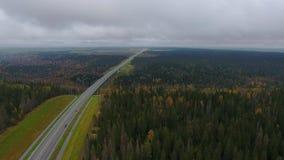 在路的看法向桥梁 秋天 股票录像