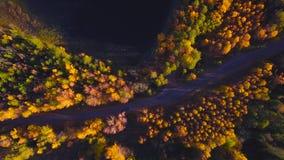 在路的空中飞行在森林之间 秋天颜色 影视素材