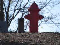 在路的红火消防栓 图库摄影