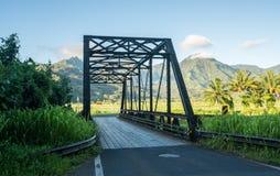 在路的老金属板梁桥向Hanalei考艾岛 免版税库存图片