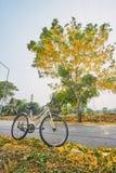 在路的自行车 库存照片
