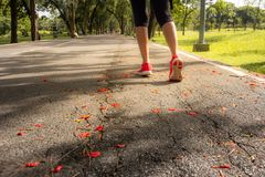 在路的运动员妇女连续锻炼在公园,健康概念 图库摄影