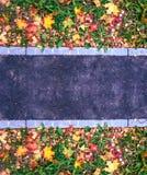 在路的遏制在秋天在城市很多黄色和绿色叶子和草 写的文本纯净的沥青 的treadled 免版税库存图片