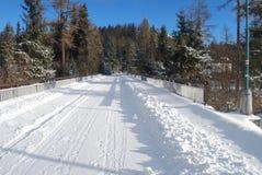 在路的雪 库存图片