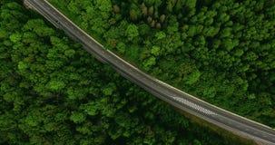 在路的鸟瞰图飞行有移动的汽车的,那通过车道绿色森林驾车沿森林公路 天线:汽车drivi 影视素材