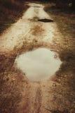 在路的水坑 库存图片