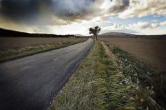 在路的cloudscape国家(地区) 免版税图库摄影