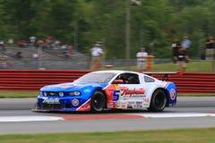 在路线的赞成Ford Mustang赛车 免版税库存图片