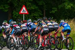 在路自行车赛跑的丹麦冠军 图库摄影