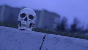 在路附近的头骨 在公路事故谋杀的注意危险 影视素材