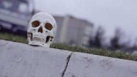 在路附近的头骨 在公路事故谋杀的注意危险 股票视频