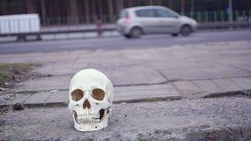 在路附近的头骨 在公路事故谋杀的注意危险 股票录像
