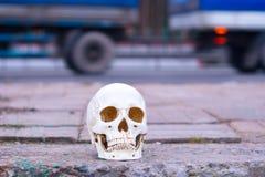 在路附近的头骨 在公路事故谋杀的注意危险 免版税图库摄影