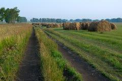在路附近的许多干草堆在领域 免版税库存照片
