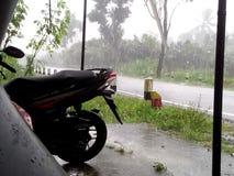 在路雨季的雨 库存图片