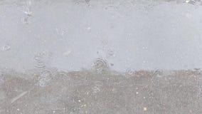 在路面的大雨 股票视频