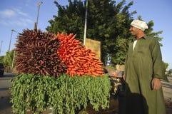 在路,开罗,埃及旁边的埃及农场主销售红萝卜  免版税库存图片