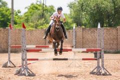 在跳过障碍的马的车手在跳跃的竞争 免版税库存照片