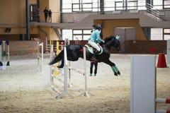 在跳过障碍的黑公马的年轻女性车手 免版税库存照片