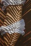 在身体的棕榈叶反射 库存图片