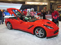在车展的多数普遍的汽车 免版税库存图片