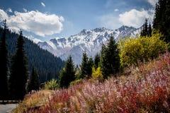 在轨道的山景向伟大的Almaty湖 库存图片