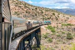 在轨道的等待的牛, Verde峡谷铁路 图库摄影