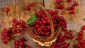 在转动在木桌上的篮子的红浆果 股票视频