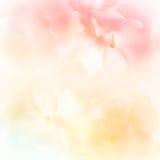 在软性和迷离样式的生动的颜色花在桑树裱糊纹理 库存图片