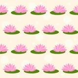 在软性的动画片桃红色莲花上色了盖子无缝的样式背景 库存图片