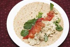 在软的套的三文鱼沙拉传播 免版税库存照片