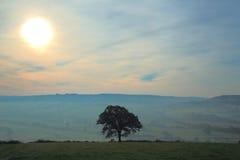 在轴谷的有薄雾的早晨 库存照片