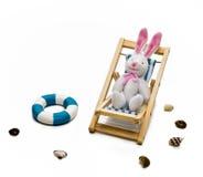 在轻便折叠躺椅的兔子 库存照片