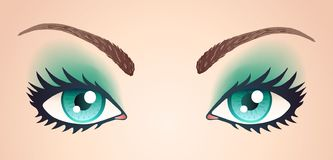 在轻的皮肤的蓝眼睛 向量例证