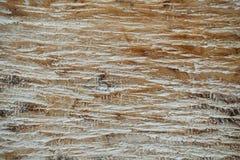 在轻的米黄颜色的木波浪纹理背景 库存图片