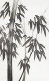 在轻的背景的竹子 向量例证