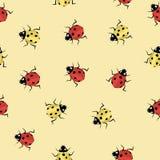 在轻的背景的红色和黄色瓢虫 免版税库存图片