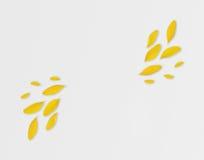 在轻的背景的黄色瓣 现代秋季背景 平的位置 您的好和文本的地方 库存照片