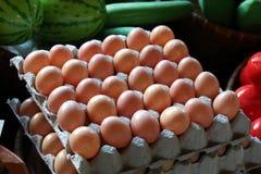 在载纸盘的塑料鸡蛋 免版税库存照片