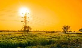 在输电线的美好的日落与绿色领域 图库摄影