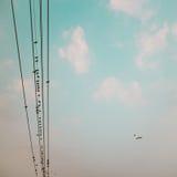 在输电线的鸟缚住反对与云彩backgroun的蓝天 免版税库存图片