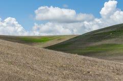 在辗压农场上的白色云彩 库存照片