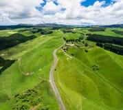 在辗压小山的旅行在罗托路亚,新西兰 免版税图库摄影