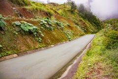 在辛可宁附近的哥斯达黎加路126在阿拉胡埃拉省 库存照片